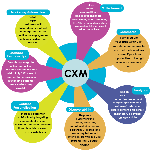 customer-experience-management-factors