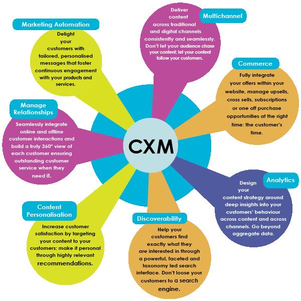 customer-experience-management-factors